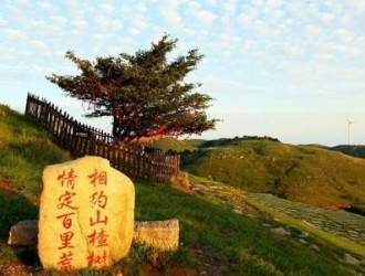 酒店免费接 宜昌-百里荒山楂树之恋 1日游(天天特价)