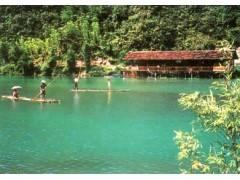 【天然氧吧—三峡竹海】生态一日游