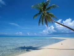 宜昌到海南、三亚、椰岛风情双飞五日海岛跟团游