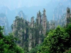 张家界森林公园、黄石寨、金鞭溪,凤凰古城五日游