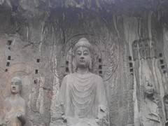 【洛阳牡丹、龙门石窟、少林寺三日游】姹紫嫣红、国色天香