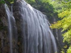 特别推荐:三峡大瀑布[半日]游,每日上下午两班