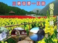 春季赏花三峡奇潭特惠一日游 48元/人(3月8日首班)