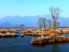 船进神农架 |醉美大九湖|免费游三峡|体验神农溪品质二日游