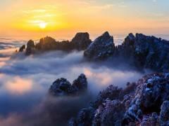 杭州西湖、水乡乌镇+黄山+千岛湖双动六日游|宜昌到华东旅游