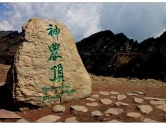 神农架两日游【宜昌往返 超值纯玩团含神农架精华四大景区】