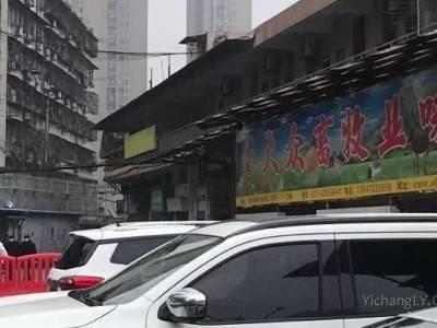 武汉市场野味菜单图片_武汉华南海鲜市场大众畜牧业味店铺