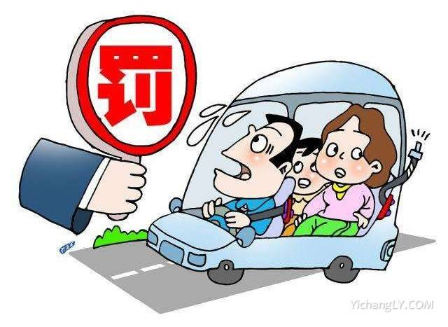 今起驾乘汽车不系安全带将受罚
