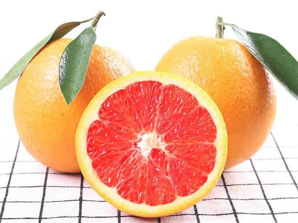 <包邮>现摘秭归脐橙新鲜血橙10斤装
