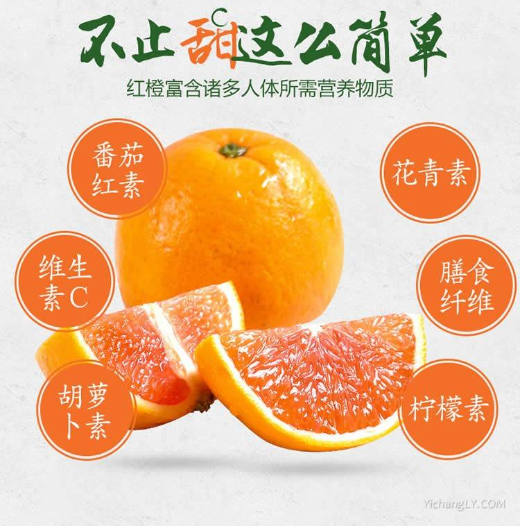 现摘秭归脐橙新鲜血橙10斤装
