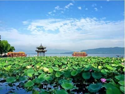 宜昌到乌镇旅游 宜昌到杭州西湖旅游 迷情乌镇三日游 当地参团