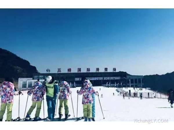 【宜昌最新滑雪场推荐】宜昌到五峰滑雪高端双滑 住独岭云顶