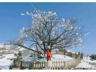 宜昌百里荒滑雪赏雪一日游