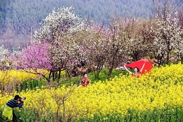 春节假期后多地气温迎来大回暖