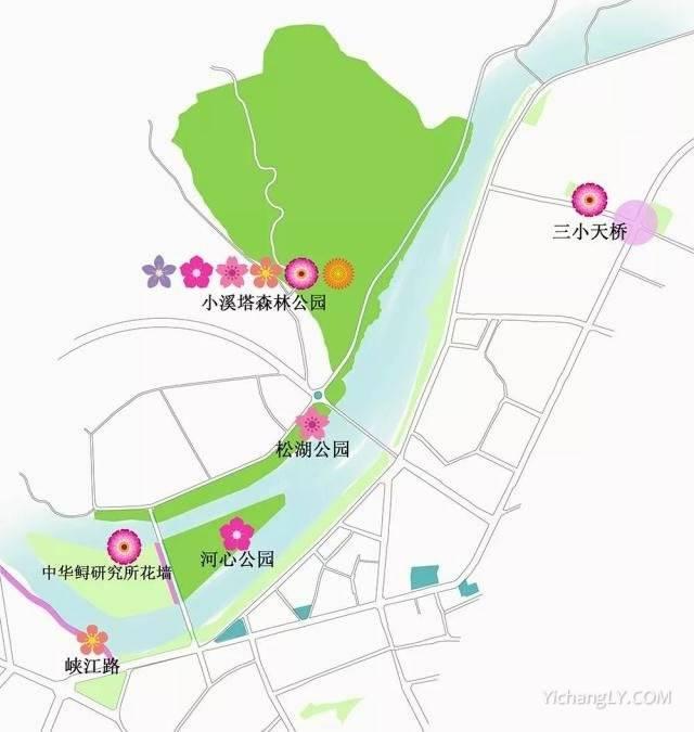 2021春季赏花线路图