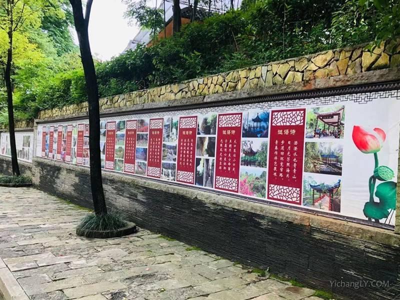 宜昌鸣翠谷风景区图片