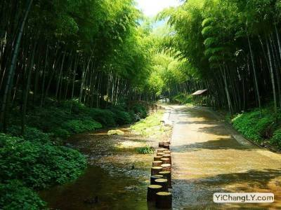 三峡竹海旅游攻略